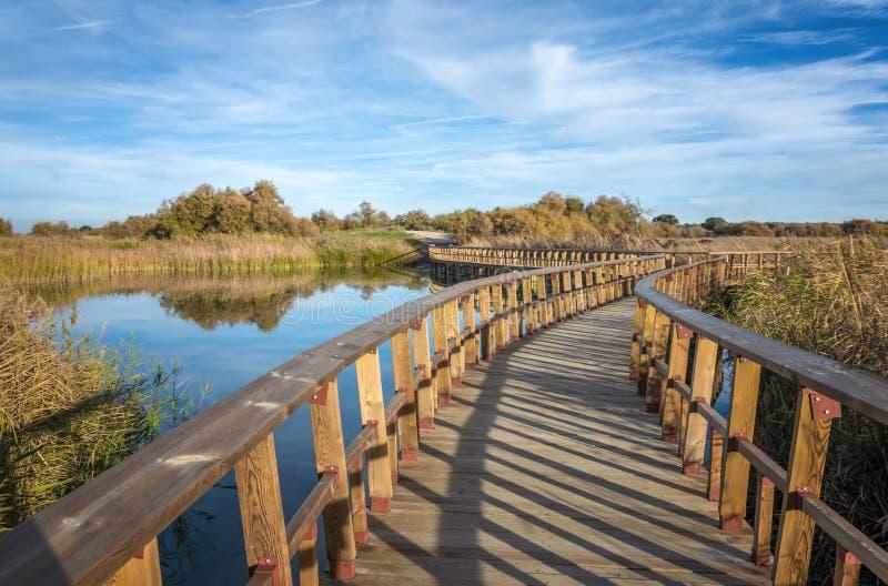 Puente en el lago Parque nacional Tablas de Daimiel Ciudad verdadero españa imagen de archivo libre de regalías