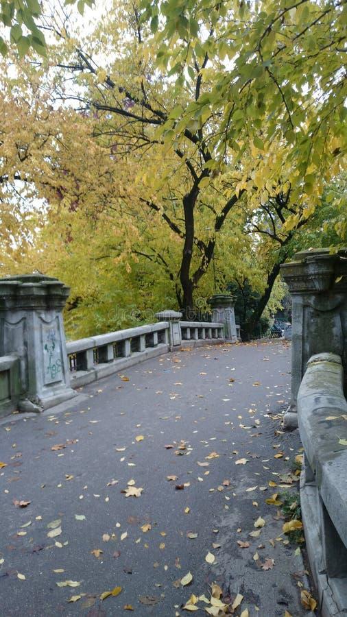 Puente en el parque foto de archivo