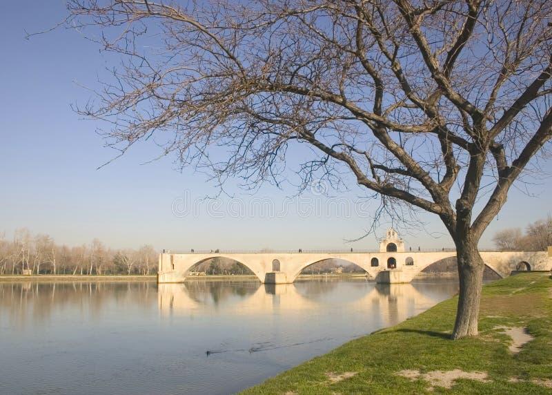 Puente en invierno, Francia, Europa de Avignon foto de archivo libre de regalías