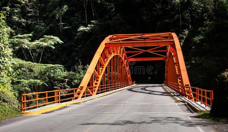 Puente en la selva tropical de Perú fotografía de archivo
