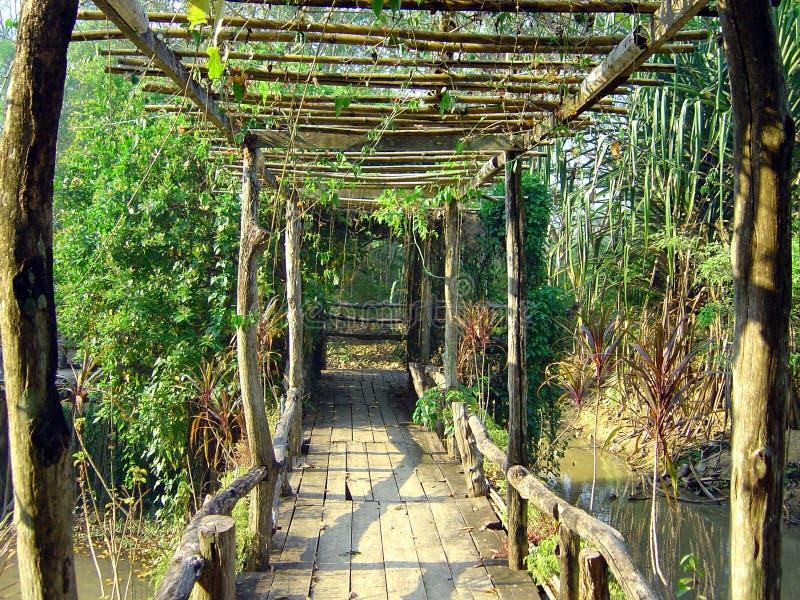 Puente en selva tailandesa imagenes de archivo
