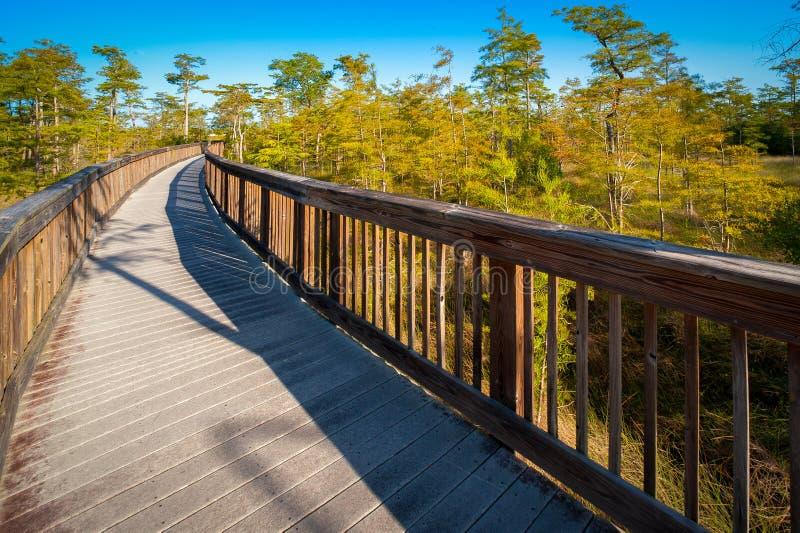 Puente en un bosque imagenes de archivo