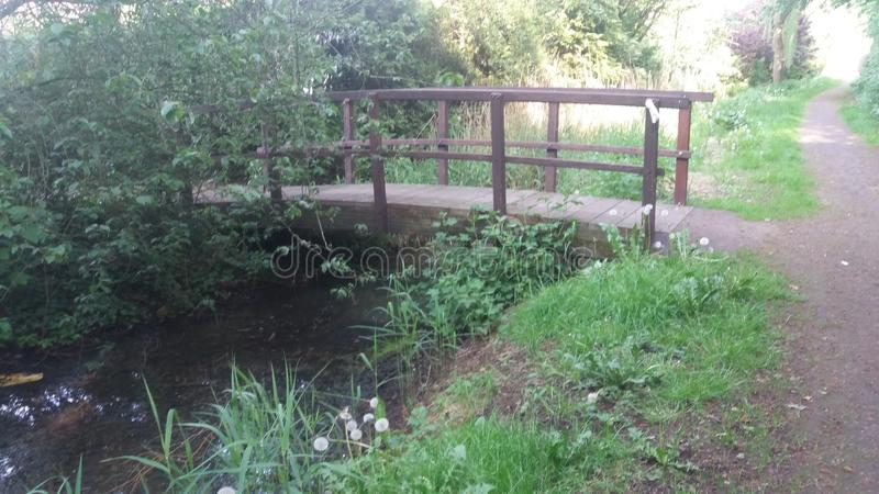 Puente en un bosque imagen de archivo