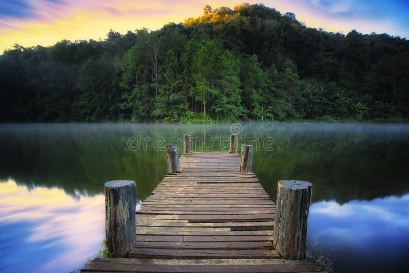 Puente enselvado sobre el río en parque del ung de la punzada foto de archivo