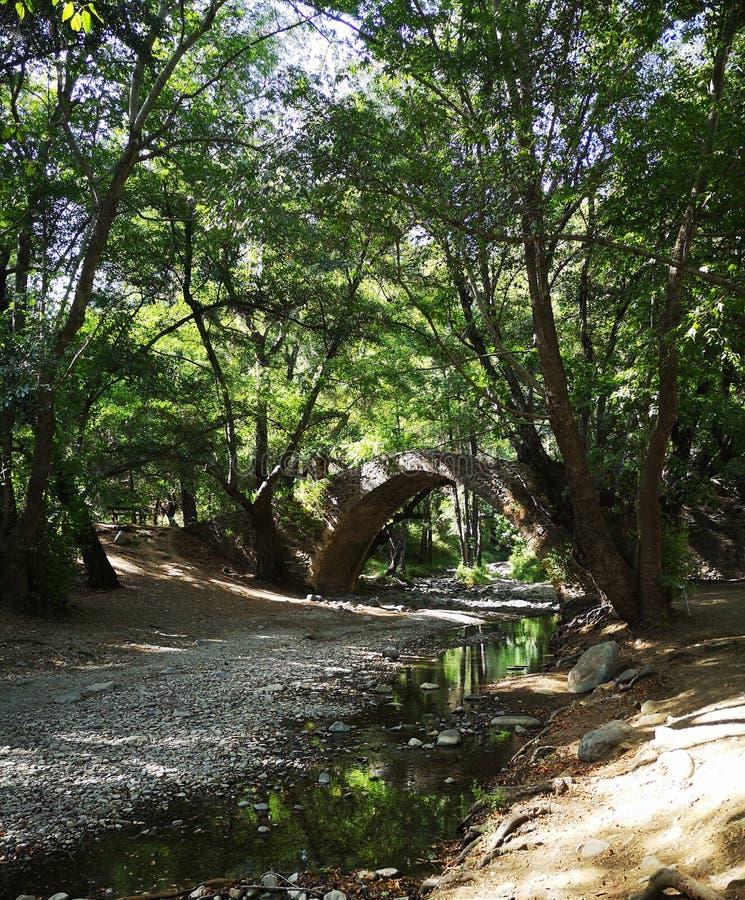 Puente medieval en la montaña de Troodos - Chipre fotos de archivo