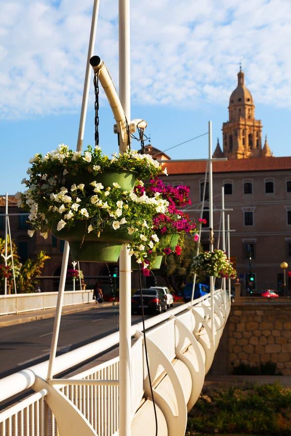 Puente Miguel Caballero i Murcia, Spanien royaltyfri foto