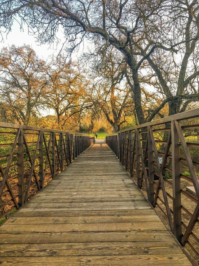 Puente que cautiva del pasado foto de archivo libre de regalías