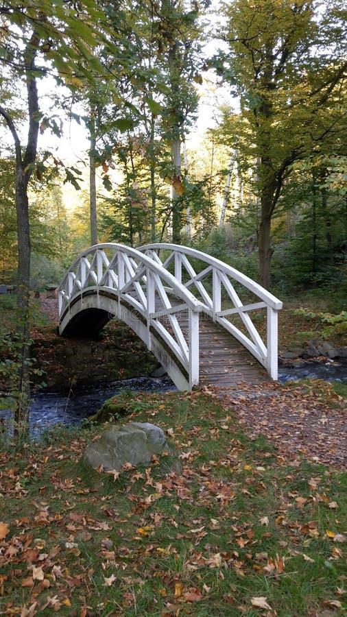 Puente romántico fotografía de archivo libre de regalías