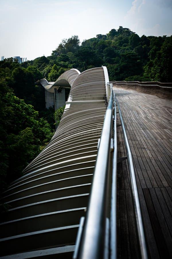 Puente Singapur de la onda de Handerson imagenes de archivo