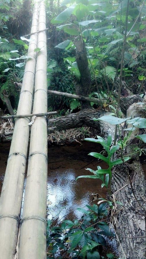 Puente sobre el agua tranquila fotos de archivo libres de regalías