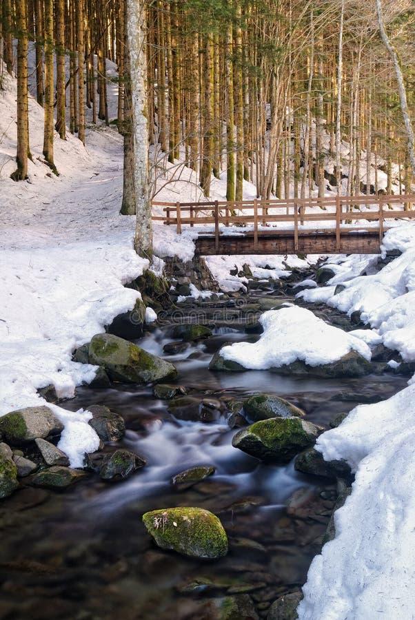Puente sobre la corriente en el parque natural imágenes de archivo libres de regalías