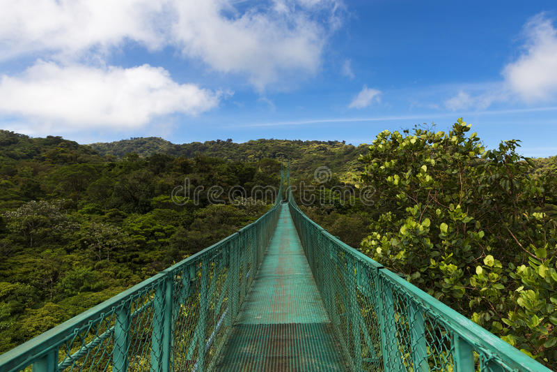 Puente suspendido sobre el toldo de los árboles en Monteverde, Costa Rica imagenes de archivo