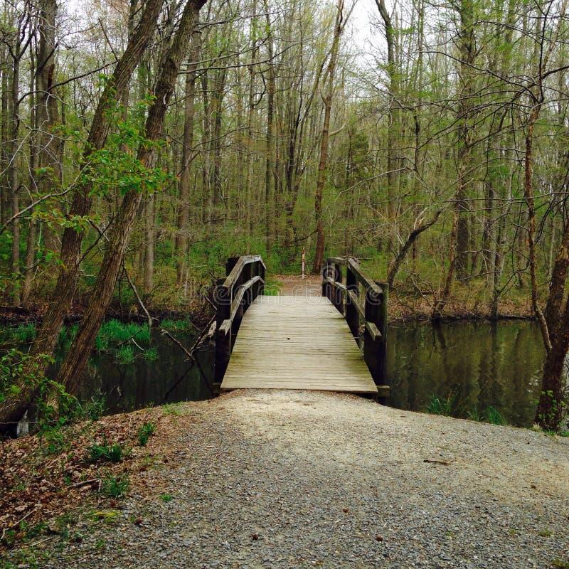 Puente a Terrabithia foto de archivo libre de regalías
