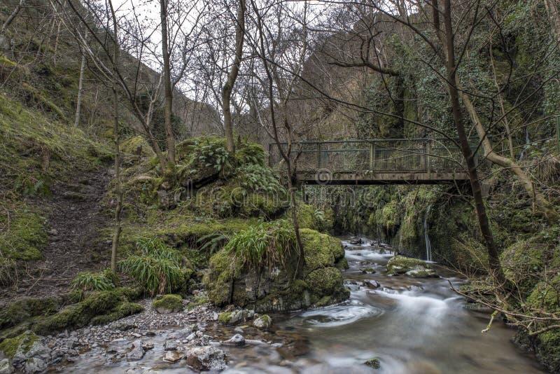 Puente viejo, Alva Glen Scotland imagen de archivo