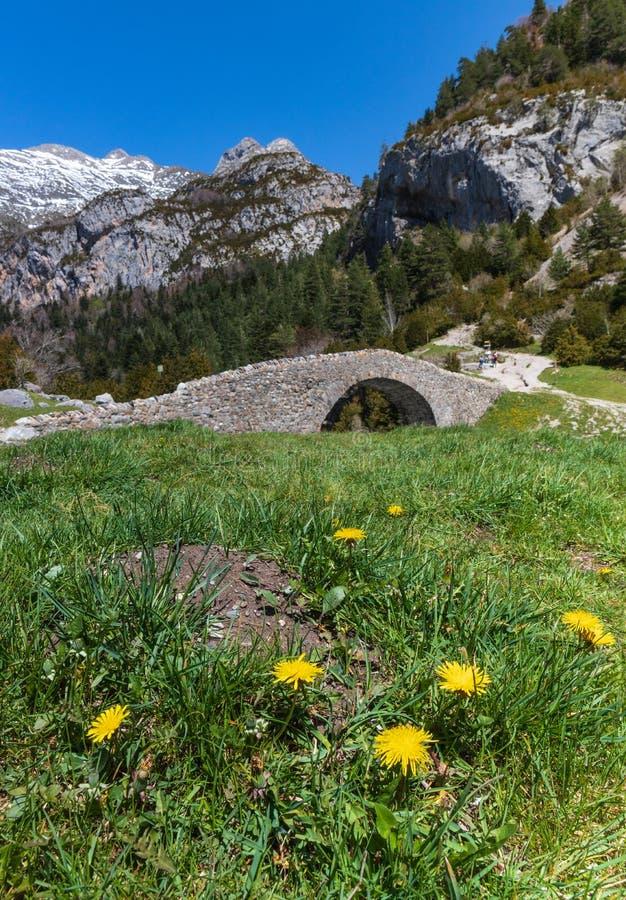 Puente viejo en un paisaje natural foto de archivo