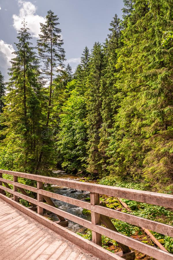 Puente viejo y de madera en el valle de Koscieliska en las montañas de Tatra fotos de archivo libres de regalías