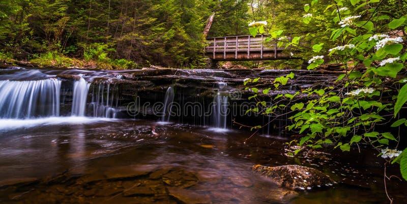 Puente y cascadas que caminan en cala de la cocina en parque de estado de la cañada de Ricketts fotografía de archivo libre de regalías