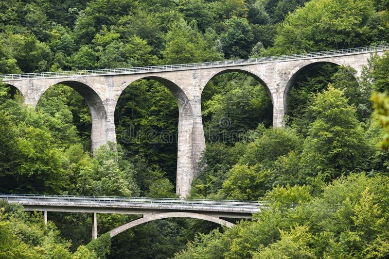 Puentes en el bosque en paisaje de Montenegro, Montenegro imágenes de archivo libres de regalías