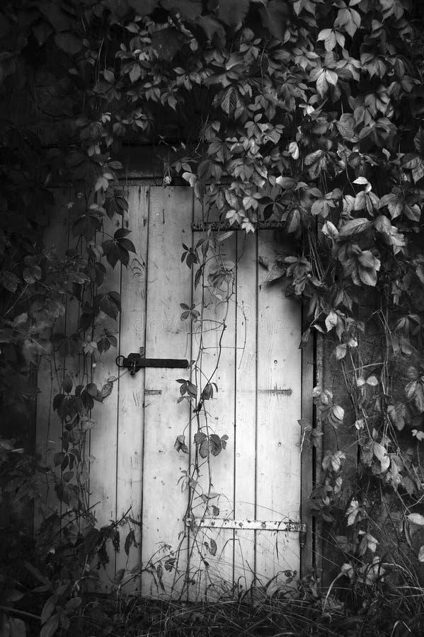 Puerta blanco y negro fotografía de archivo