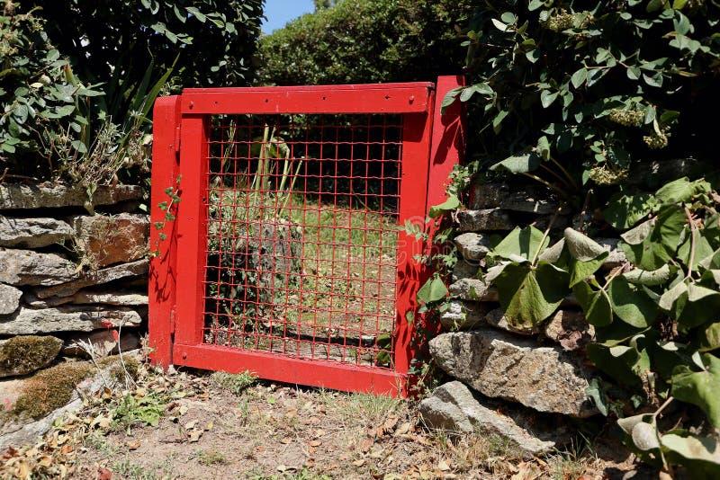 Puerta de jardín roja imagen de archivo libre de regalías