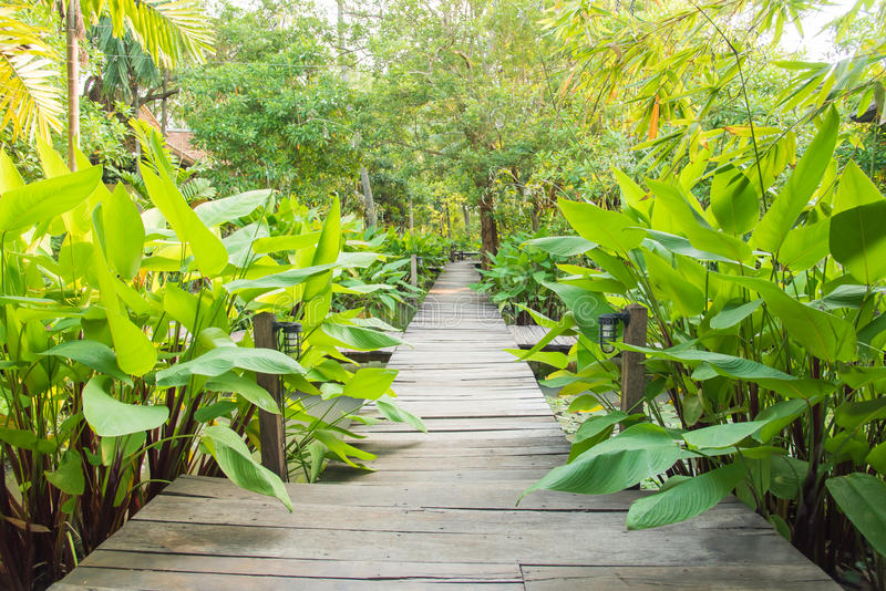 Puerta de la entrada al jardín tropical imágenes de archivo libres de regalías