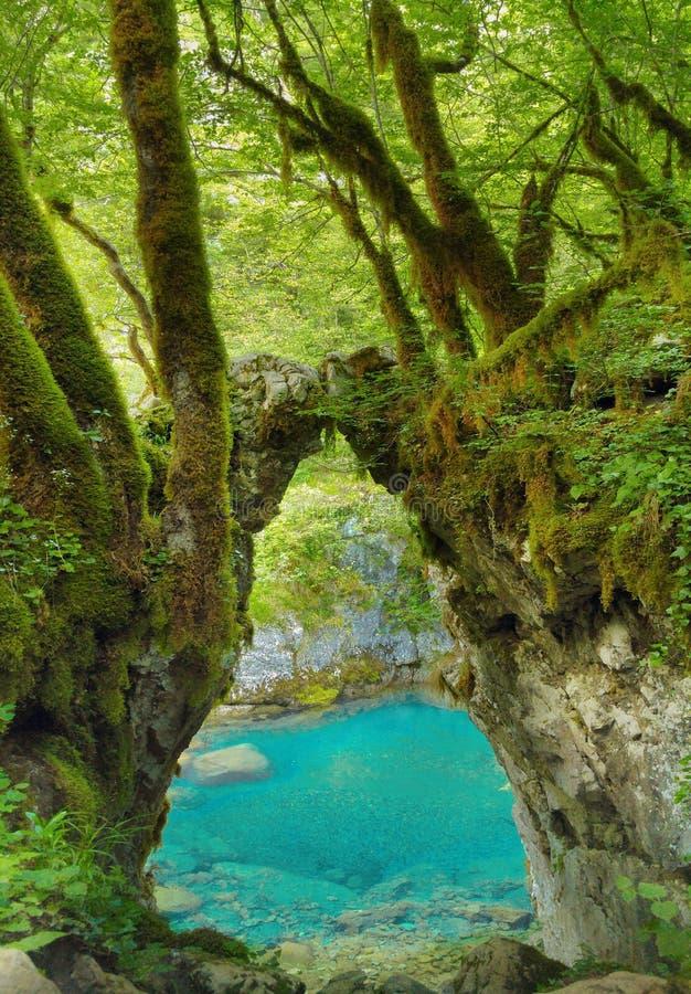 Puerta de los deseos, zelja de Kapija Barranco Montenegr del río de Mrtvica fotos de archivo libres de regalías