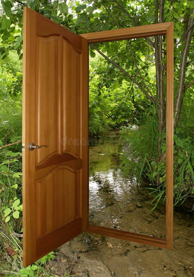 Puerta de madera abierta con el bosque fotografía de archivo libre de regalías