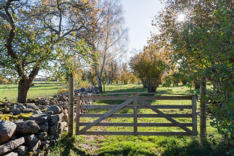Puerta de madera en un paisaje colorido imagen de archivo libre de regalías