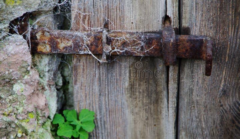Puerta de madera vieja con el cierre oxidado y un trébol foto de archivo