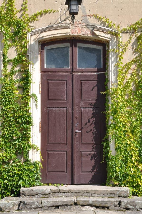 Puerta de madera vieja con la hiedra verde foto de archivo
