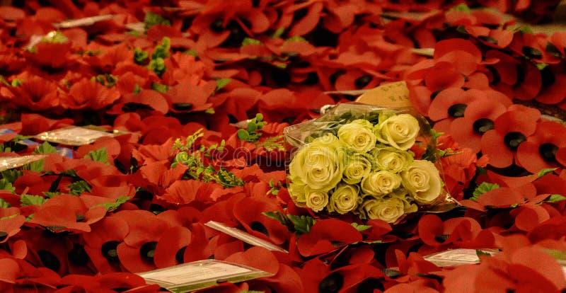 Puerta de Menin - las amapolas y las rosas - recuérdelos fotos de archivo libres de regalías