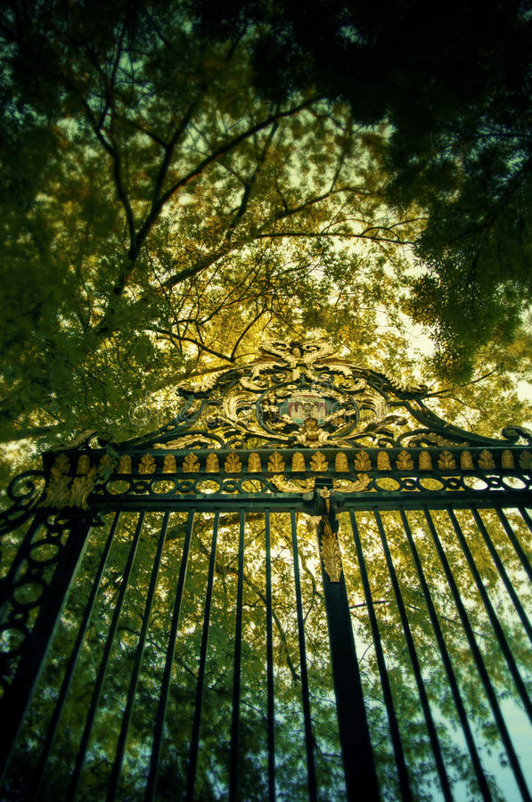 Puerta de oro fotografía de archivo libre de regalías