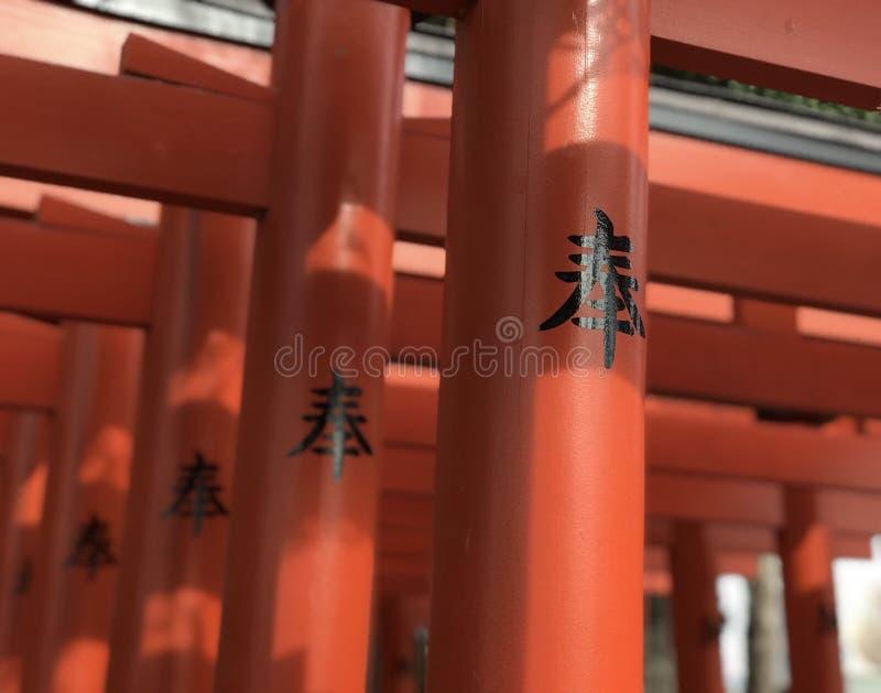Puerta de Torii del japonés en Kumamoto, Kyushu fotografía de archivo