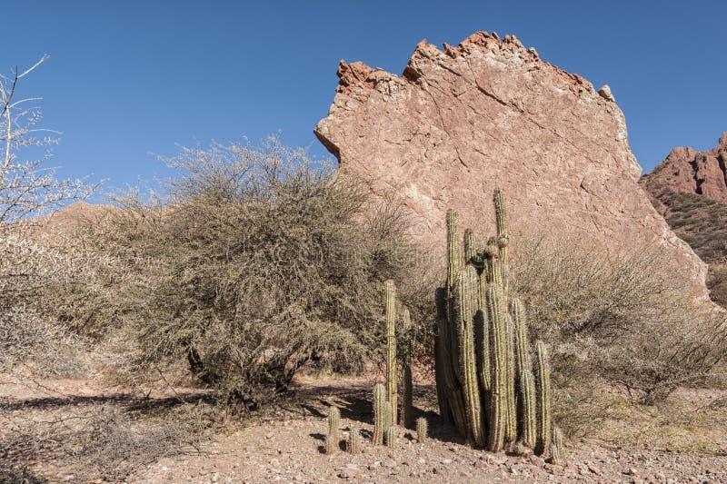 Puerta del Diablo, aka puerta de los diablos, formación de roca roja en Canyon rojo seco Quebrada de Palmira cerca de Tupiza, bol fotos de archivo libres de regalías