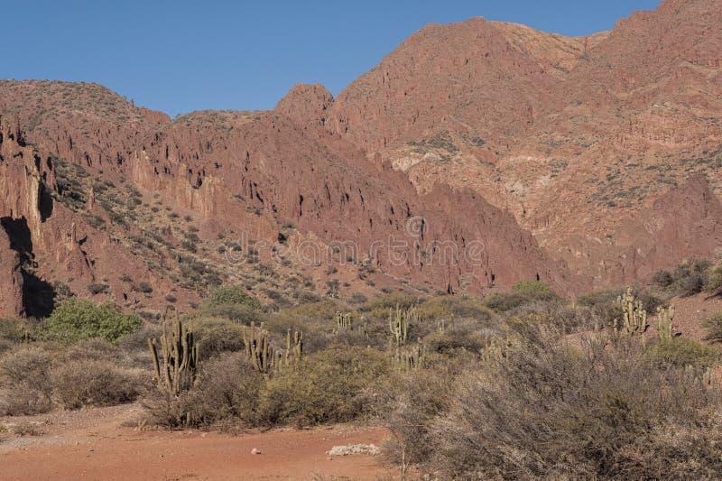 Puerta del Diablo, aka puerta de los diablos, formación de roca roja en Canyon rojo seco Quebrada de Palmira cerca de Tupiza, bol foto de archivo libre de regalías