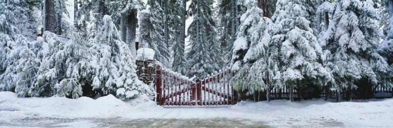 Puerta del invierno foto de archivo libre de regalías