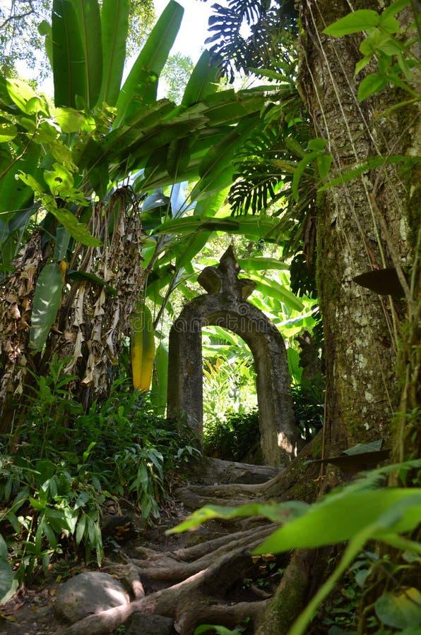 Puerta del paraíso tropical imagenes de archivo
