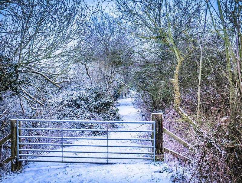 Puerta nevada grande con camino más allá fotografía de archivo