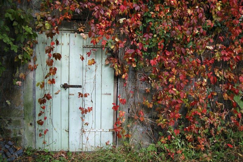 Puerta rodeada por las hojas rojas fotografía de archivo libre de regalías