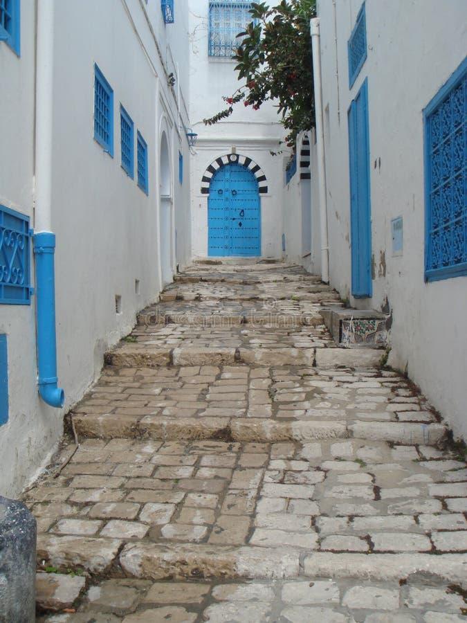 Puertas azules de Sidi Bou Said Tunisia imagenes de archivo