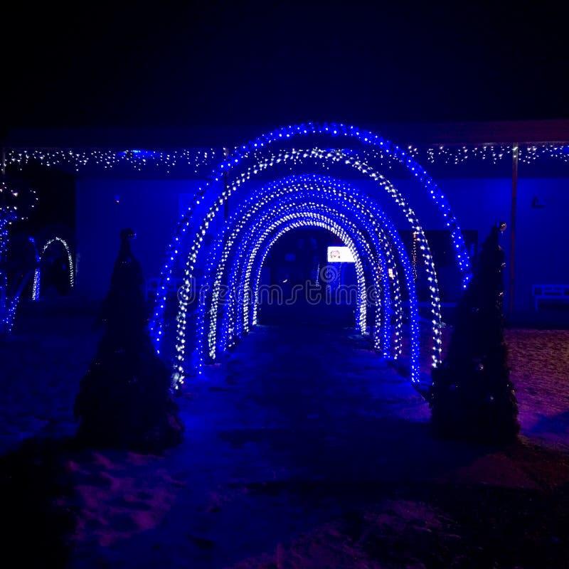 Puertas en color azul foto de archivo libre de regalías