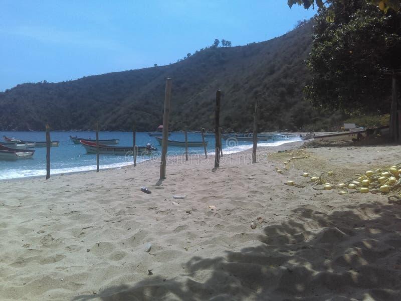 Puerto Cruz lizenzfreie stockfotografie
