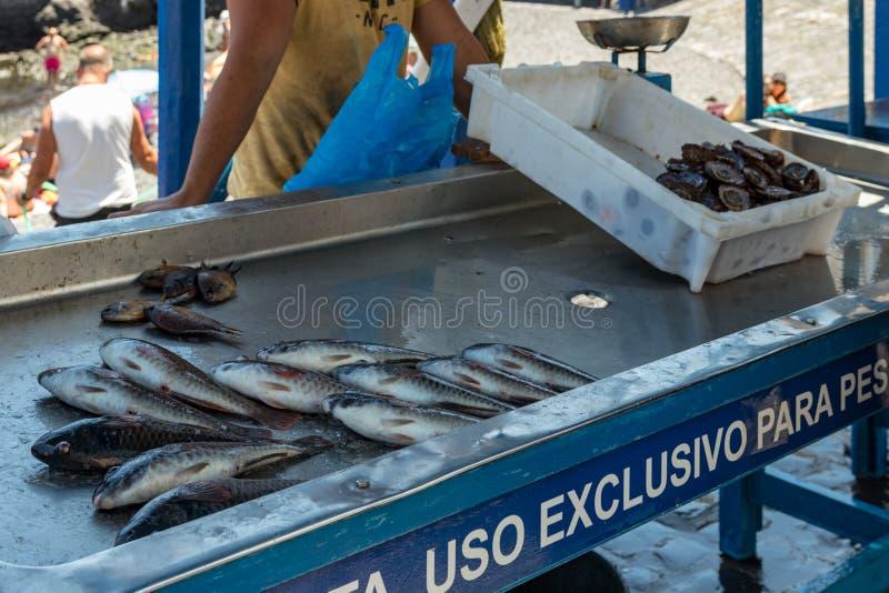 Puerto Cruz, Tenerife, Spanien - Juli 10, 2019: Fiskaren efter ett lyckat fiske, bak räknaren säljer hans lås av fisken och arkivfoto