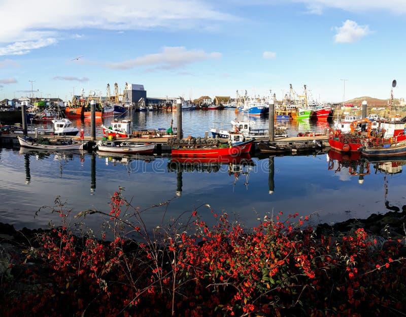 Puerto de Dublín - Howth imagen de archivo