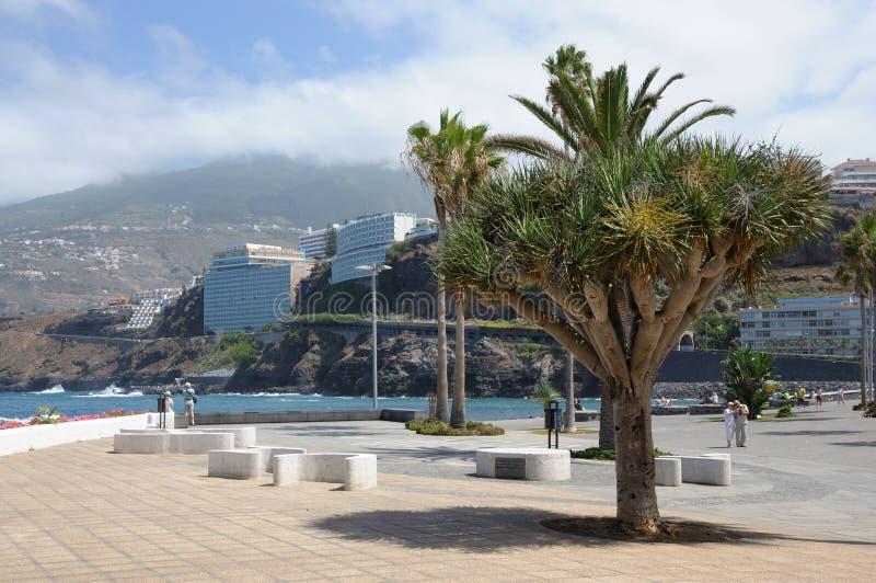 Puerto DE La Cruz promenade. Tenerife, Spanje royalty-vrije stock foto