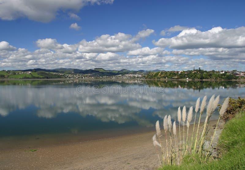 Puerto de Tauranga, NZ fotos de archivo libres de regalías