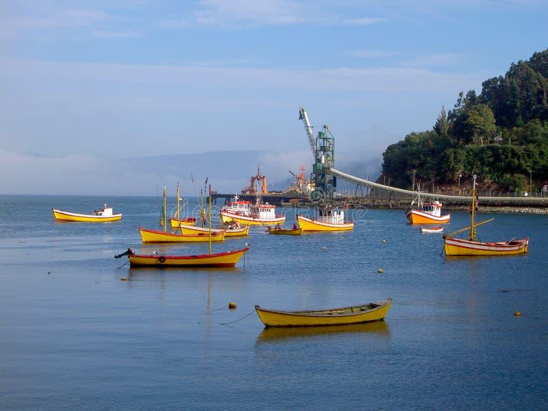 Puerto de Valdivia, Chile foto de archivo libre de regalías