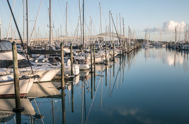 Puerto deportivo de Auckland Westhaven en salida del sol fotos de archivo libres de regalías