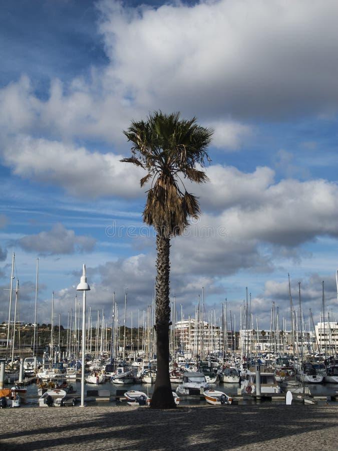 Puerto en Lagos Portugal imagenes de archivo