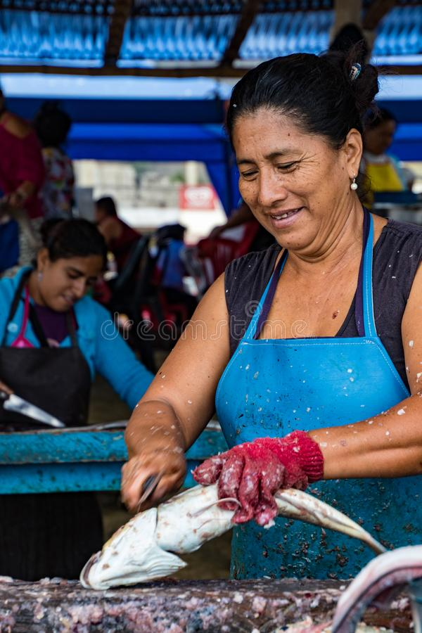 Woman prepares freshly caught fish for market royalty free stock photos
